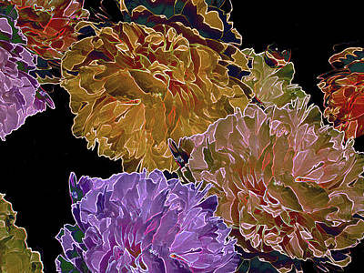 Digital Art - Peonies Adrift 31 by Lynda Lehmann