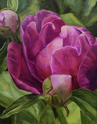 Painting - Peonies In Spring by Elise Procter