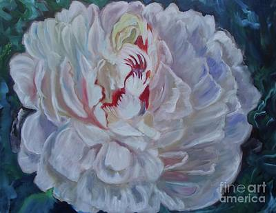 Painting - Peony 11 Jenny Lee Discount by Jenny Lee
