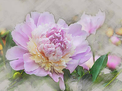 Digital Art - Peony 2 by Mark Mille
