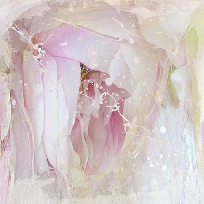 Photograph - Peony Abstract 4 by Karen Lynch