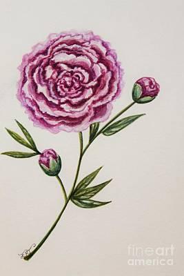 Painting - Peony Botanical by Elizabeth Robinette Tyndall
