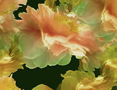 Mixed Media - Peony Cluster 20 by Lynda Lehmann