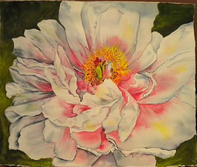 Painting - Peony  by Diane Ziemski