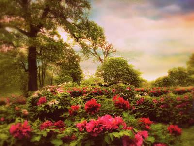 Photograph - Peony Fields by Jessica Jenney