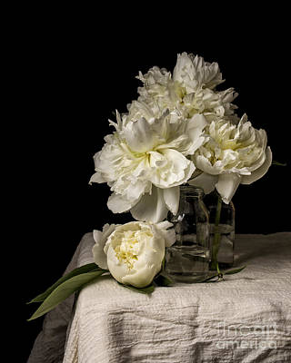 Still Life Photograph - Peony Flowers by Edward Fielding