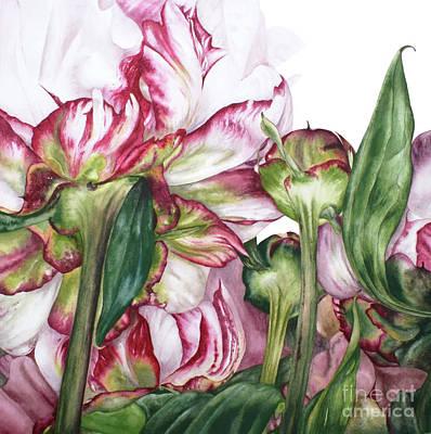 Single Flower Painting - Peony Garden by Marie Burke