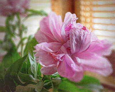 Photograph - Peony by Larry Bishop