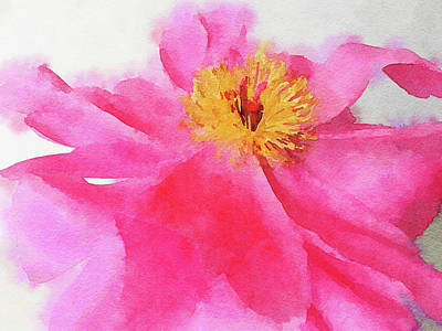 Digital Art - Peony by Mark Greenberg