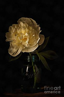 Photograph - Peony Old Masters by Edward Fielding