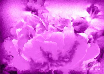 Mixed Media - Peony Raspberry Purple - Orchid Frost Peony by Janine Riley