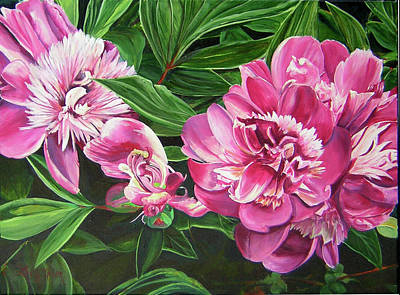 Peony Trilogy Art Print by Lee Nixon