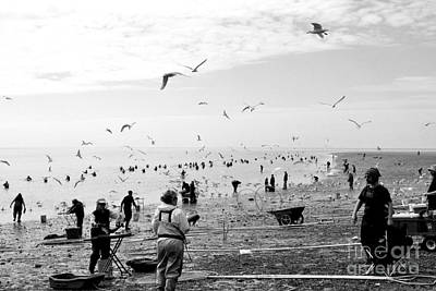 Photograph - People And Birds Against Fish  1 by Tanya Searcy