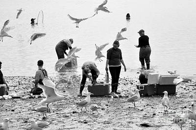 Photograph - People And Birds Against Fish  2 by Tanya Searcy