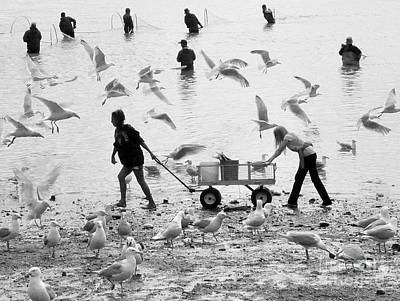 Photograph - People And Birds Against Fish  3 by Tanya Searcy