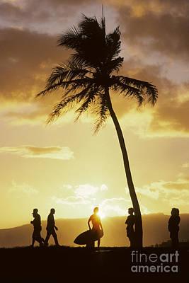 People Enjoy Sunset Palms Art Print by Carl Shaneff - Printscapes