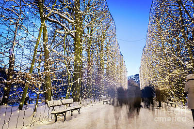 Photograph - People Walking In Winter Park Decorated With Lights. Park Oliwsk by Michal Bednarek