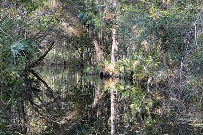 Photograph - Pepper Creek - Homosassa Springs Wildlife State Park by rd Erickson