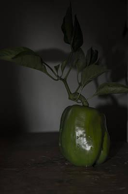 Photograph - Pepper Shadow 567 by Rae Ann  M Garrett