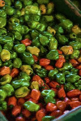 Photograph - Peppers 4 by Travis Burgess