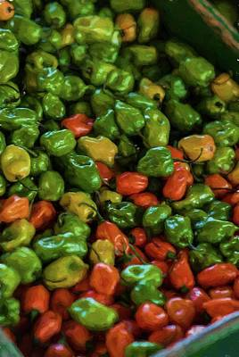Photograph - Peppers 5 by Travis Burgess