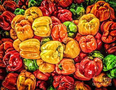 Photograph - Peppers Galore by Nick Zelinsky