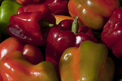 Peppers In The Late Afternoon Art Print by Robert Ullmann