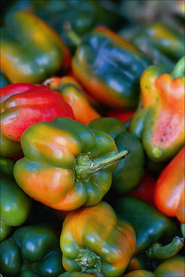 Little Mosters - Peppers of Many Colors by Robert Ullmann