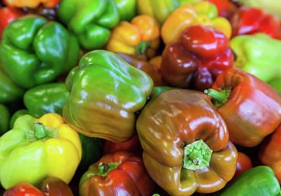 Photograph - Peppers by Shirley Radabaugh