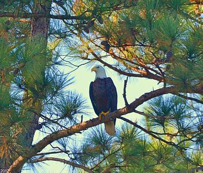 Photograph - Perched Among The Pines by Lisa Wooten