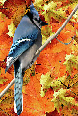 Perched In Autumn  Art Print by Debra     Vatalaro