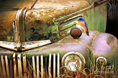 Digital Art - Perched On The Old Ford by Tina LeCour