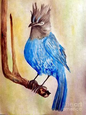 Painting - Perched Stellar Jay by Maria Urso