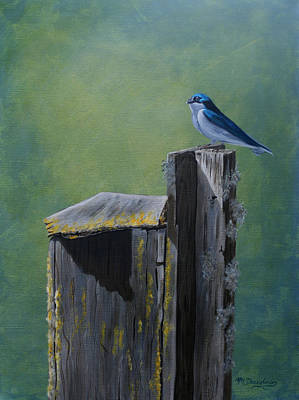 Perched Swallow Original by Melodie Douglas