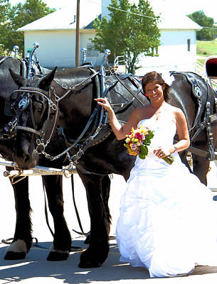 Photograph - Percheron Horses And A Bride by Cheryl Poland
