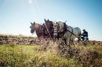 Photograph - Percherons Plowing The Iowa Prairie by Leslie Heemsbergen