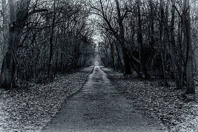 - Percival's Island Path by Tim Wilson