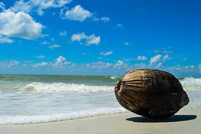 Studio Grafika Zodiac - Perfect Beach Day by Benjamin Andersen