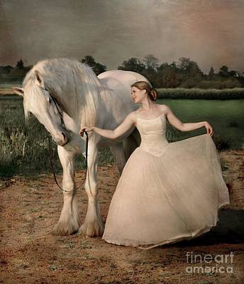 Draft Horses Photograph - Perfect Dancers by Dorota Kudyba