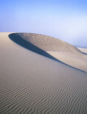 Photograph - Perfect Dune by Robert Potts