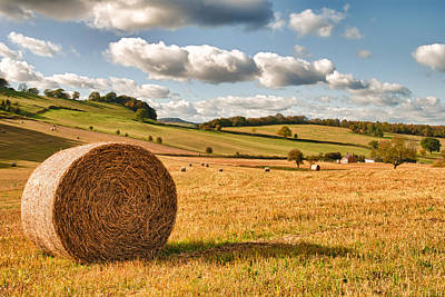 Bales Photograph - Perfect Harvest Landscape by Amanda Elwell