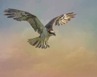 Digital Art - Perfect Landing by Erwin Spinner