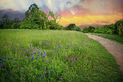 Photograph - Perfect Pathway Along The Brazos by Lynn Bauer