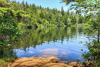 Photograph - Perfect Penobscot Pond by Elizabeth Dow