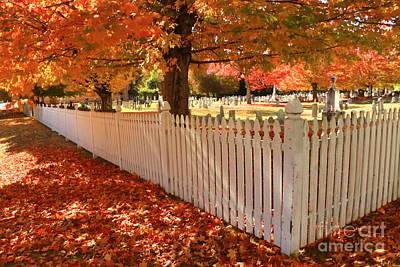 Perfect Picket Fence Art Print