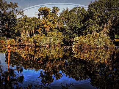 Photograph - Perfect Pond by Judy Vincent