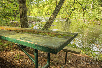 Nikki Vig Royalty-Free and Rights-Managed Images - Perfect Spot for a Picnic by Nikki Vig