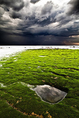 Photograph - Perfect Tempest by Jorge Maia