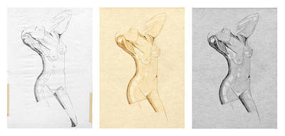 Drawing - Perfume Of Venus - Triptych - Homage Rodin by David Hargreaves
