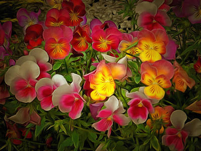 Hobbies And Collections - Art And Photograph - Radiance Pansies by Dorothy Berry-Lound